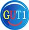 GUT1 – Rechtschreibtraining